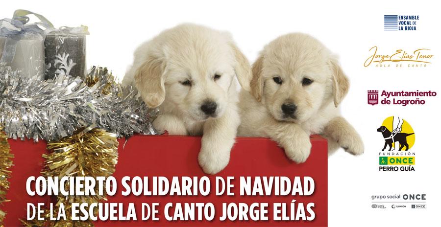 Concierto solidario Jorge Elias